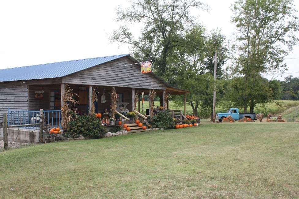 The Belue Place Pumpkin Patch