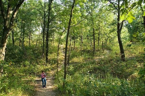 Shoal Creek Preserve